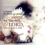 Psa 4:8 | Scripture Pictures @ alittleperspective.com