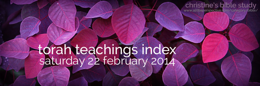 torah teachings index for sat 22 feb 2014 | christine's bible study at a little perspective