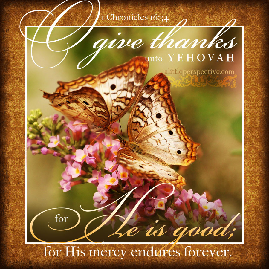 1 Chr 16:34 | scripture pictures at alittleperspective.com