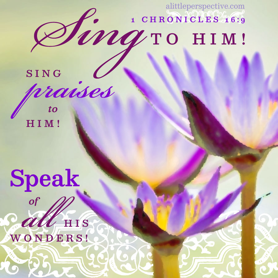 1 Chr 16:9   scripture pictures at alittleperspective.com