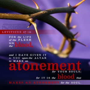 Lev 17:11 | scripture pictures at alittleperspective.com
