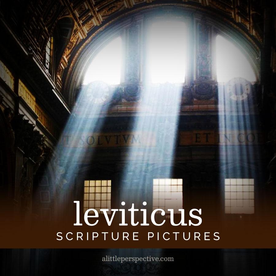 leviticus scripture pictures | alittleperspective.com