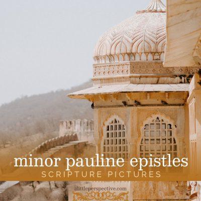 minor pauline epistles scripture pictures