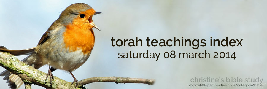 torah teachings index for sat 08 mar 2014 | christine's bible study at a little perspective