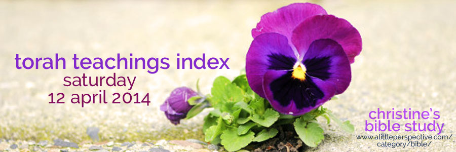 torah teachings index for sat 12 apr 2014