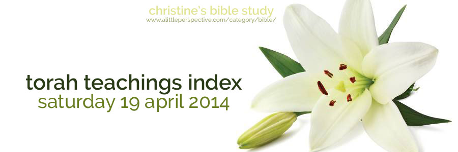 torah teachings index for sat 19 apr 2014