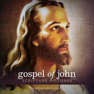 gospel of john gallery updated