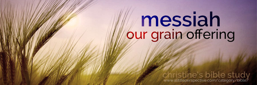 messiah our grain offering (minchah) | christine's bible study at a little perspective