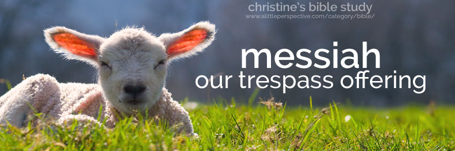 messiah, our trespass offering (asham) | christine's bible study at a little perspective