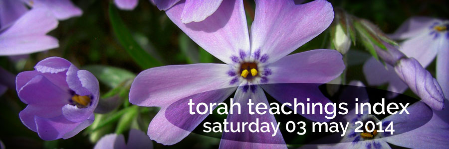 torah teachings index for sat 03 may 2014