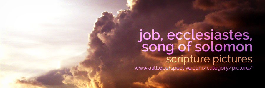 job, ecclesiastes, song of solomon scripture pictures | a little perspective