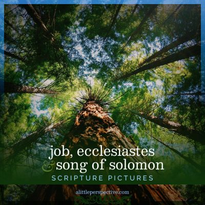 job, ecclesiastes, song of solomon scripture pictures