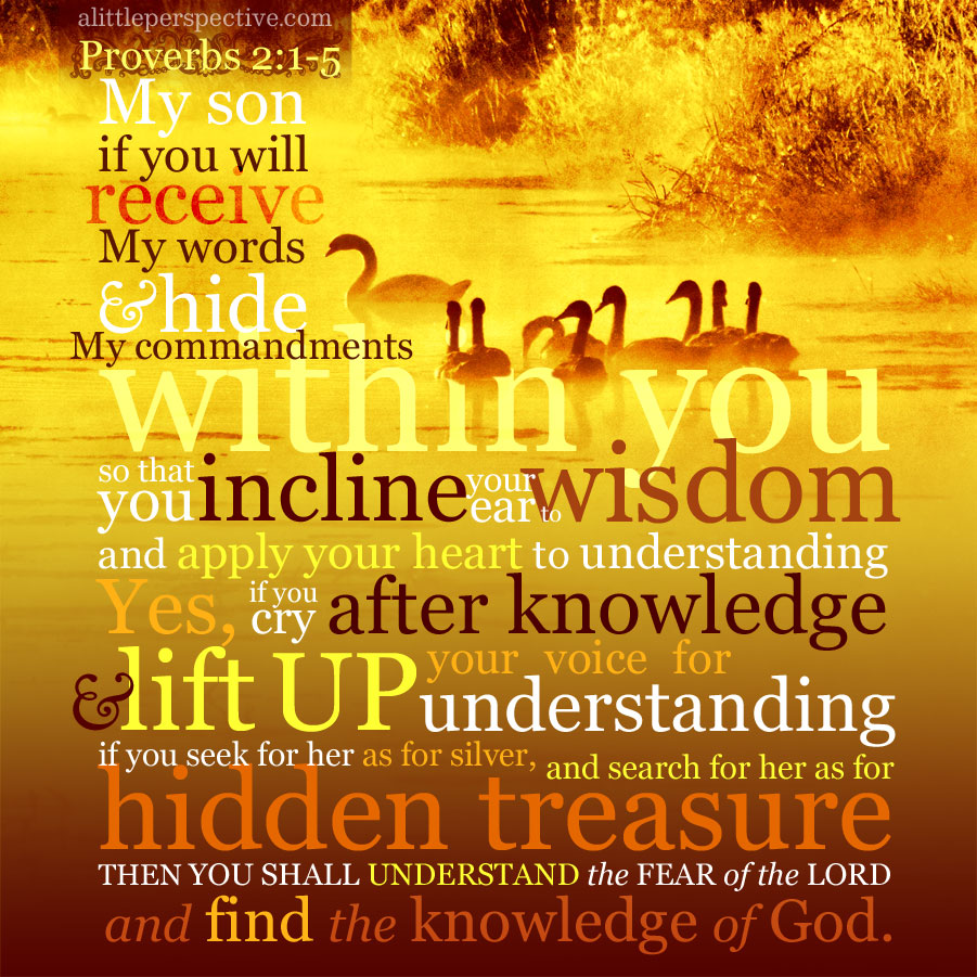 Pro 2:1-5 | scripture pictures at alittleperspective.com