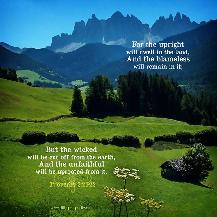 Pro 2:21 | scripture pictures at alittleperspective.com