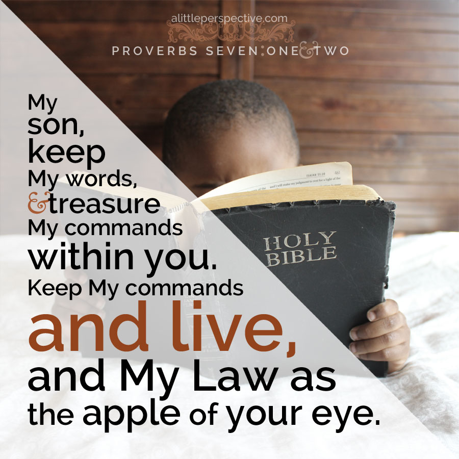 Pro 7:1-2 | scripture pictures at alittleperspective.com