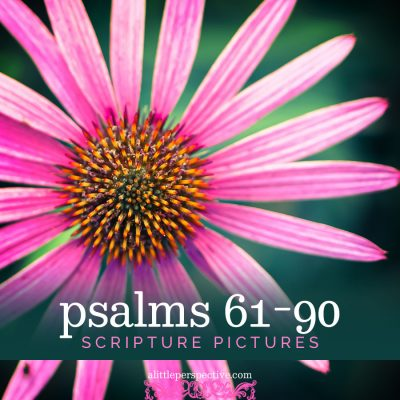 psalms 61-90 scripture pictures