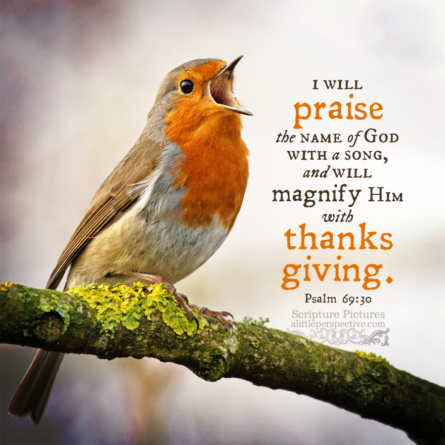 Psa 69:30 | Scripture Pictures @ alittleperspective.com