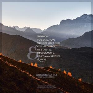 Deu 11:1   Scripture Pictures @ alittleperspective.com
