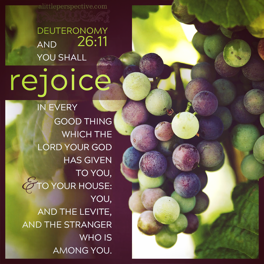 Deu 26:11 | Scripture Pictures @ alittleperspective.com
