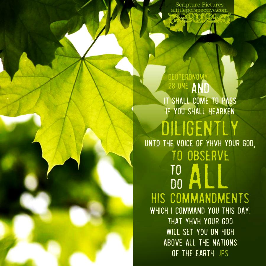 Deu 28:1 | Scripture Pictures @ alittleperspective.com