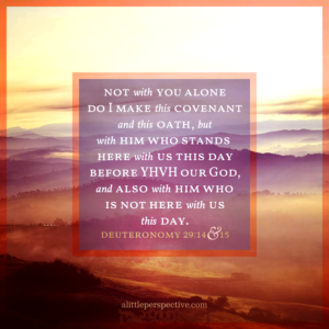 Deu 29:14-15   Scripture Pictures @ alittleperspective.com