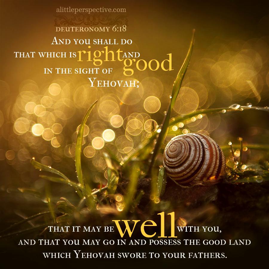 Deu 6:18   Scripture Pictures @ alittleperspective.com