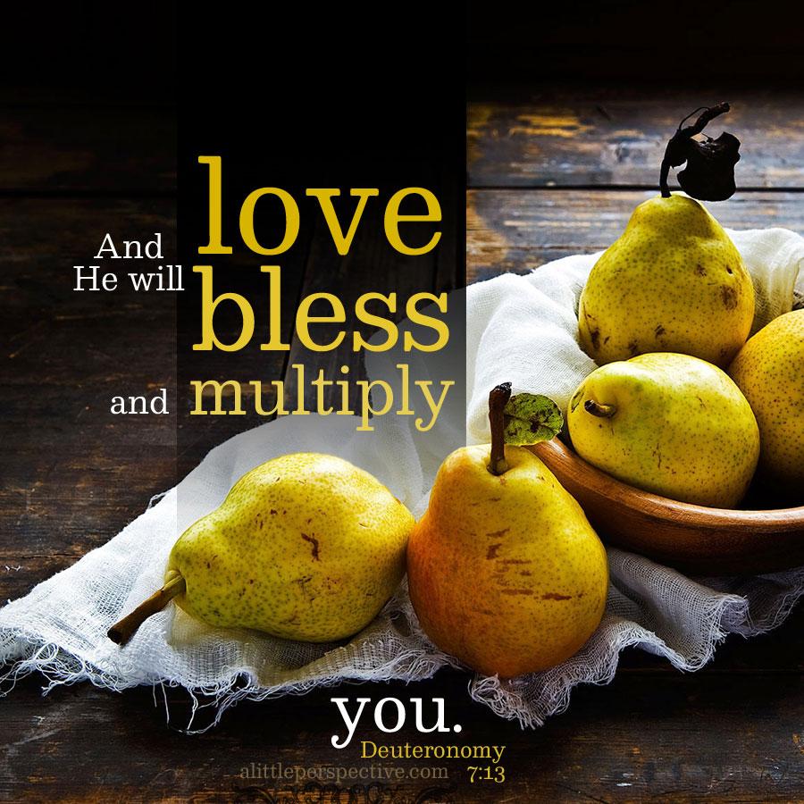 Deu 7:13 | scripture pictures at alittleperspective.com