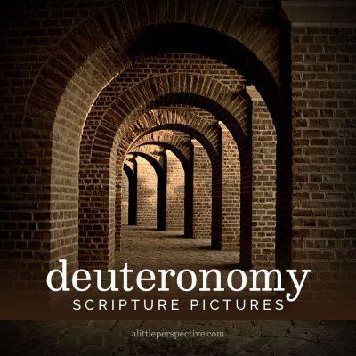 deuteronomy scripture pictures