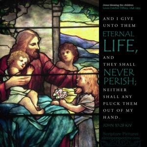 Joh 10:28   scripture pictures @ alittleperspective.com