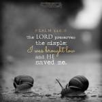 april 26 bible reading