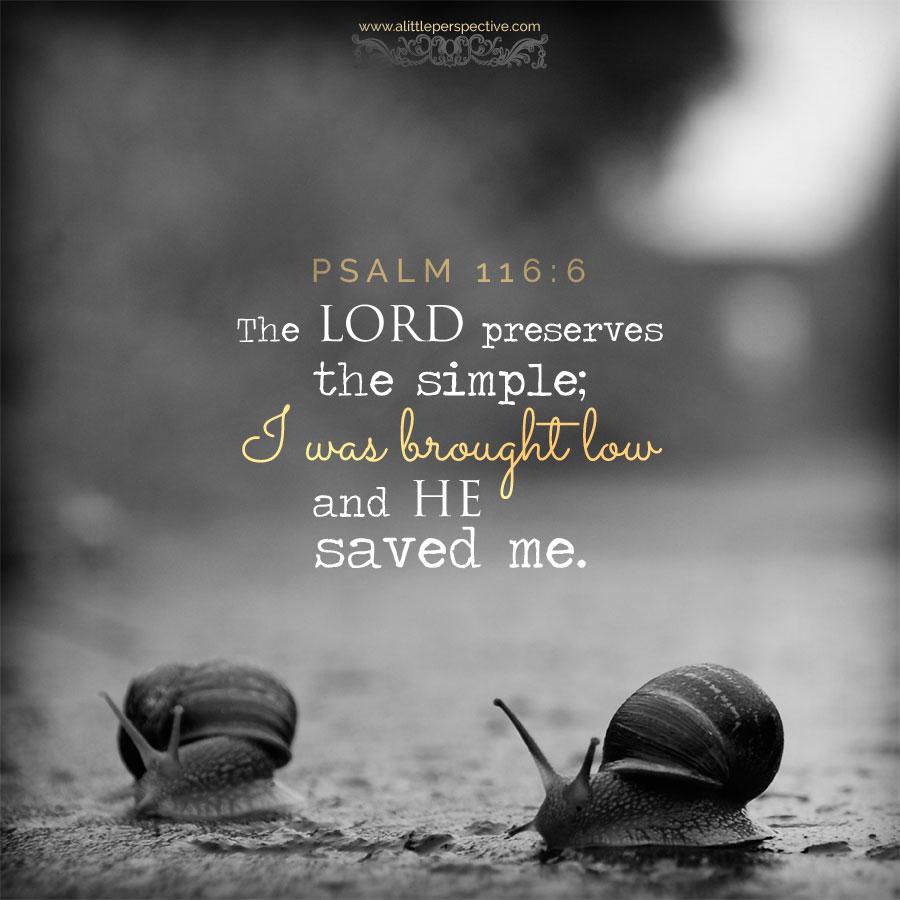 Psa 116:6