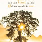 Psa 64:10 cell wallpaper | scripture pictures at alittleperspective.com