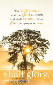 Psa 64:10 cell wallpaper   scripture pictures at alittleperspective.com