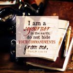 Psa 119:19