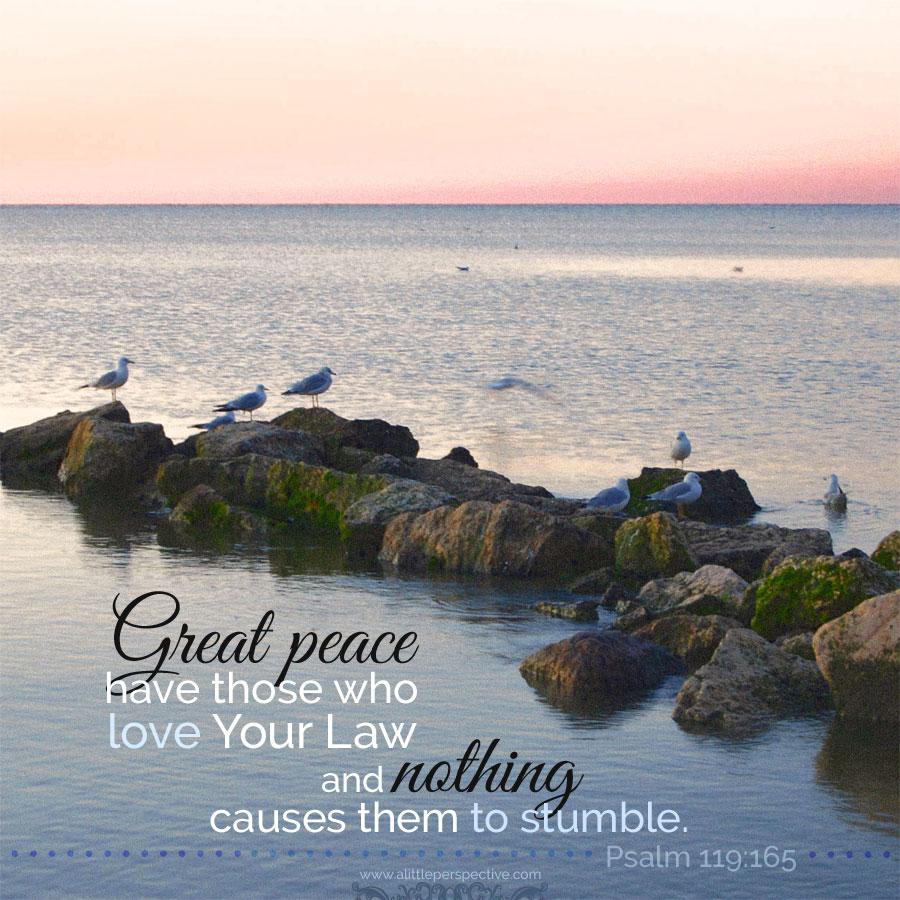 Psa 119:165