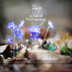 april 29 bible reading