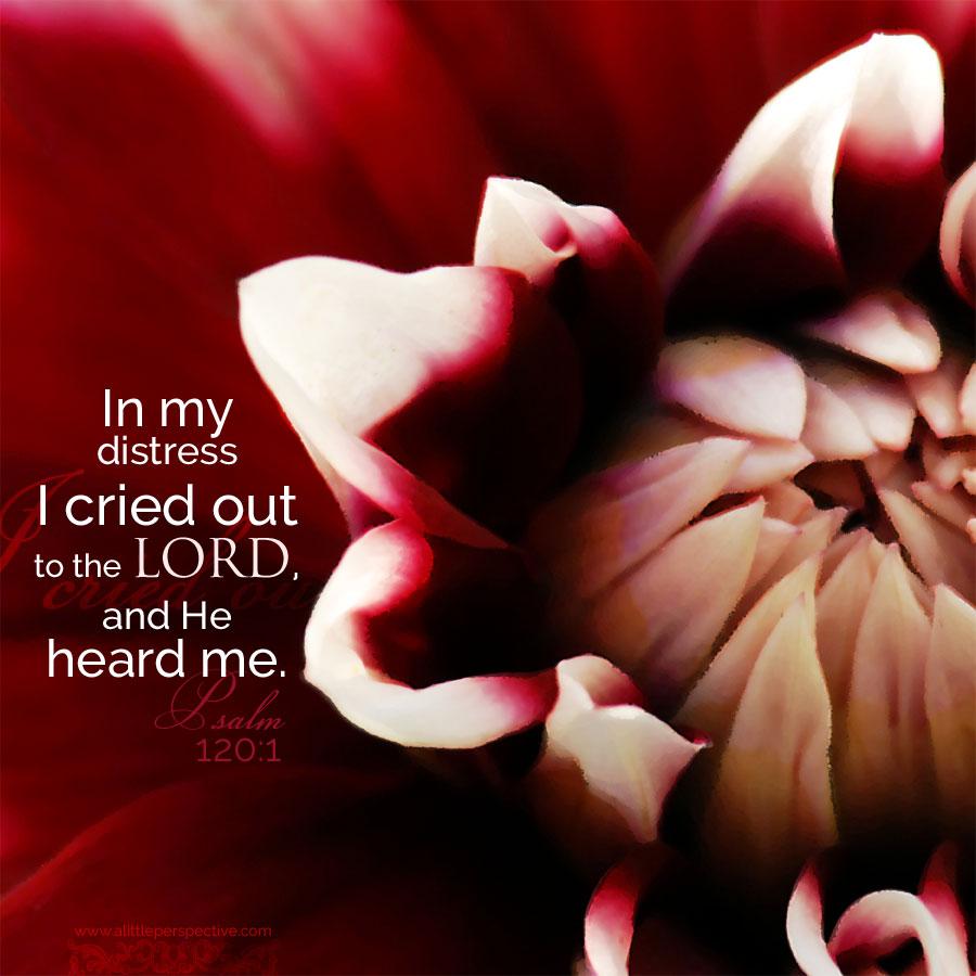 Psa 120:1
