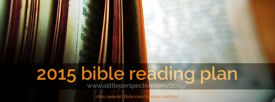2015 bible reading plan | a little perspective