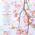 Psa 138:7 | Scripture Pictures @ alittleperspective.com
