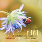 Psa 138:8 | | Scripture Pictures @ alittleperspective.com