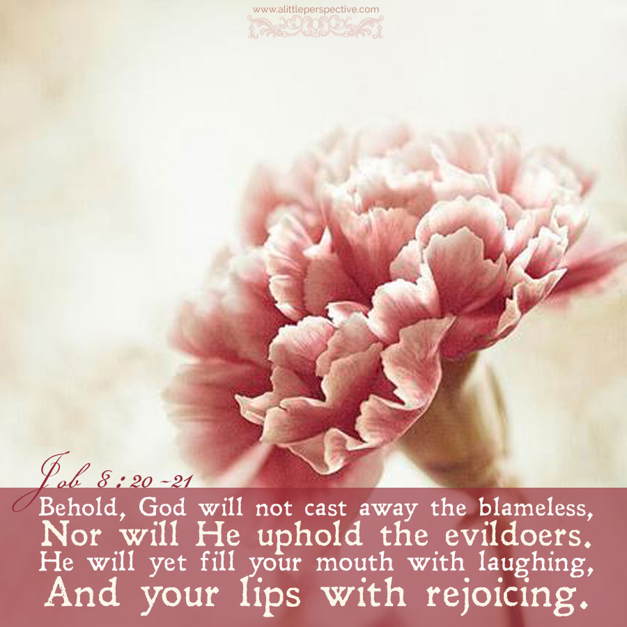 Job 8:20-21 | scripture pictures at alittleperspective.com