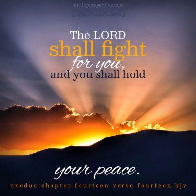 """exodus 13:17-15:21, triennial beshalach, """"when he let go"""""""