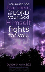 Deu 3:22 cell wallpaper   scripture pictures at alittleperspective.com