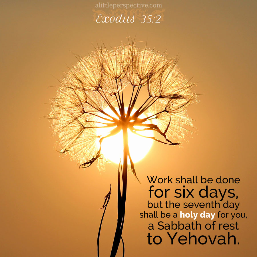 "exodus 35:1-38:20, annual vayakhel, ""and he assembled"" outline"