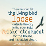 Lev 14:53 cell wallpaper | scripture pictures at a little perspective