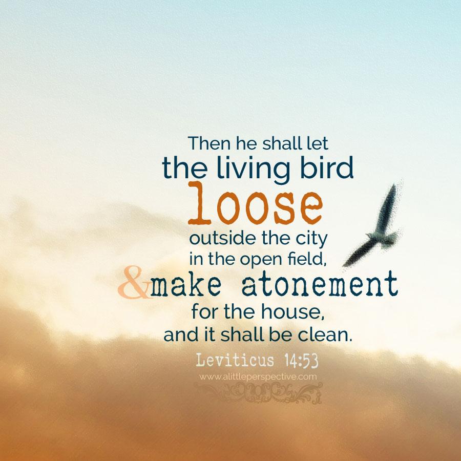 Lev 14:53