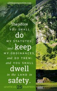 Lev 25:18 cell wallpaper | scripture pictures at alittleperspective.com
