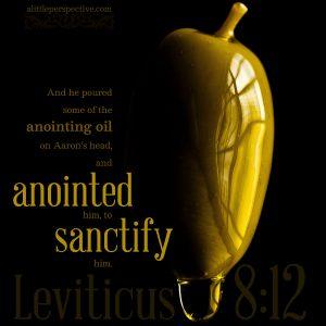 Lev 8:12 | scripture pictures at alittleperspective.com