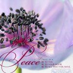 1 Sam 25:6   scripture pictures at alittleperspective.com