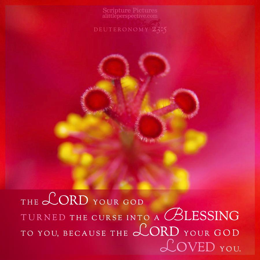 Deu 23:5 | Scripture Pictures @ alittleperspective.com